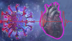 Estudo relaciona vírus da covid-19 no coração a síndrome rara que afeta crianças