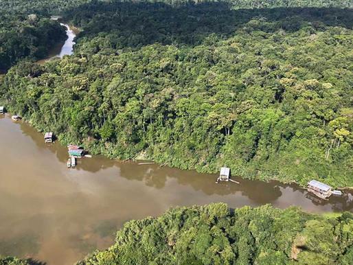 Ibama, Funai e Polícia Federal desativam garimpo ilegal próximo a índios isolados no oeste do Amazon