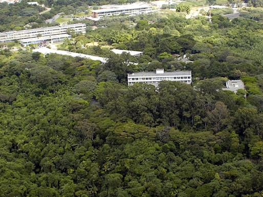 USP é a 13ª universidade mais sustentável do mundo