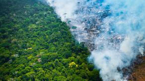 Junho registra o maior número de queimadas dos últimos 13 anos