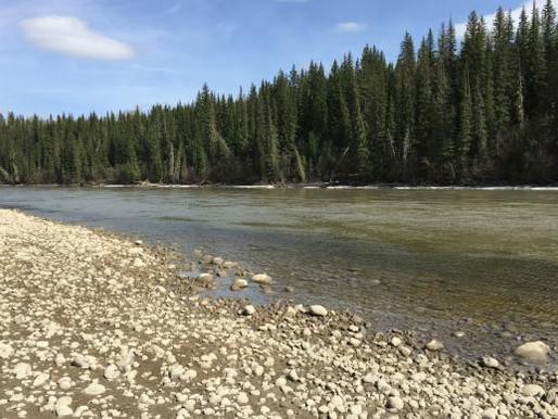 Pesquisadores buscam no Canadá metodologia para analisar contaminação em rios