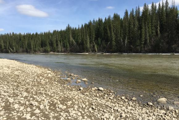 Pesquisadores brasileiros visitaram o Rio Athabasca, no Canadá, que, em outubro de 2013, foi poluído pelo rompimento da barragem de uma mina de carvãoo Tatiana Furley/Divulgação