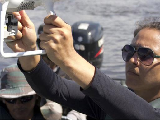 Drones são precisos no monitoramento de botos em rios estreitos da Amazônia, mostra estudo
