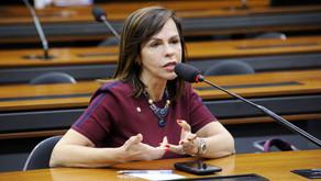 Relatora do Fundeb na Câmara apresenta proposta preliminar