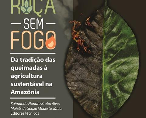 Embrapa promove agricultura que dispensa uso do fogo na Amazônia
