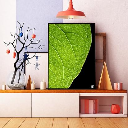 mockup-misterchlorophylle-lilas copie.pn
