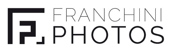 logoFRANCHINI-01.jpg