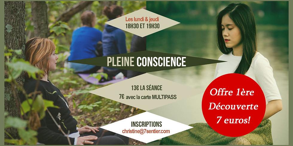 Atelier Pleine Conscience (1)