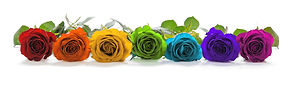 Colorful Roses.jpg