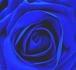 Blue_1_edited.jpg