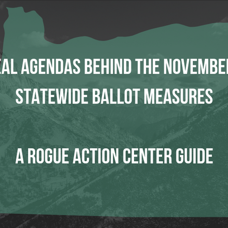 The Real Agendas Behind the November 2018 Statewide Ballot Measures