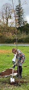201028 Centenary Tree Planting 2.jpg