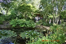 210714 Morton Hall gardens 3.JPG