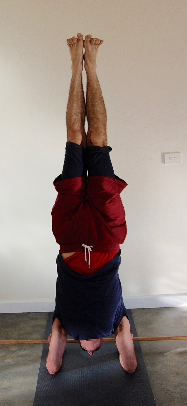 Pinchamayurasana, feather-peacock pose, here done with the help of a rod stabilizing the hands in a palms-up position.