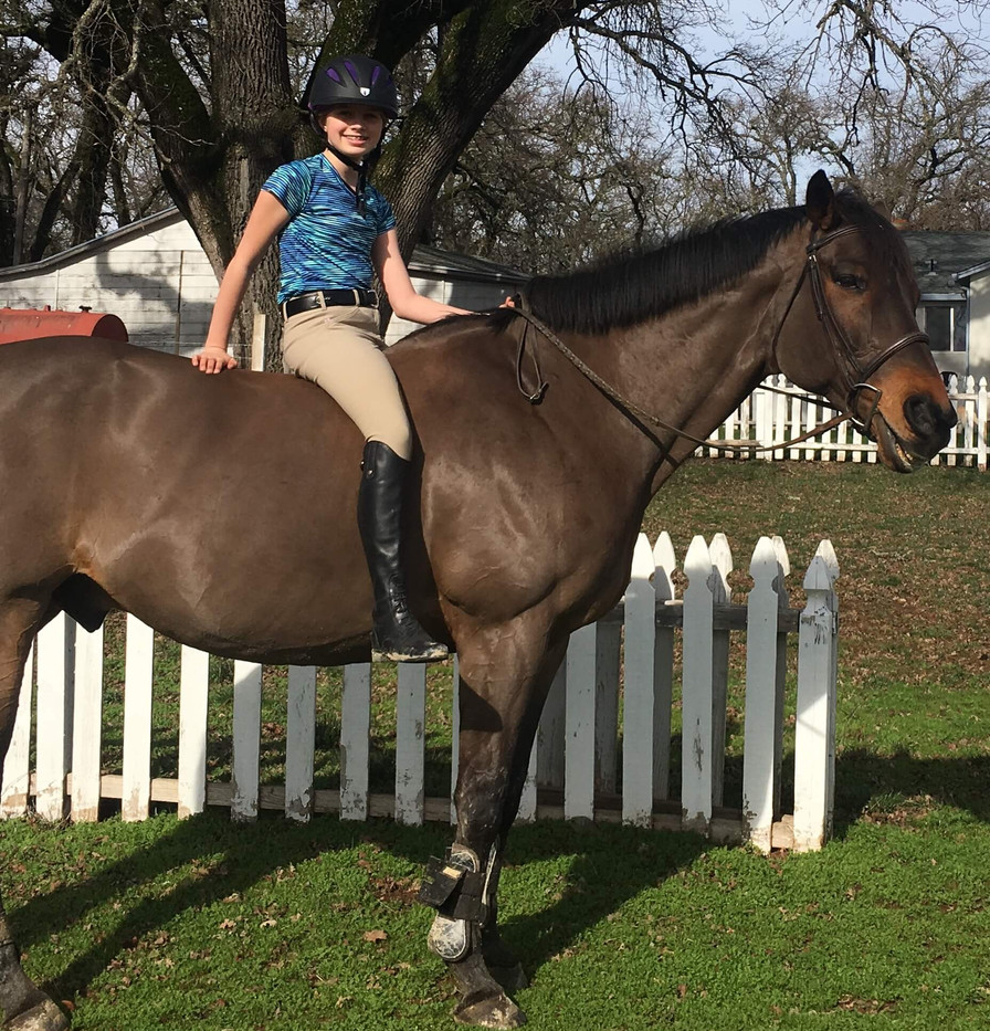 Blue Water Farms Rescue CA How to lease a horse