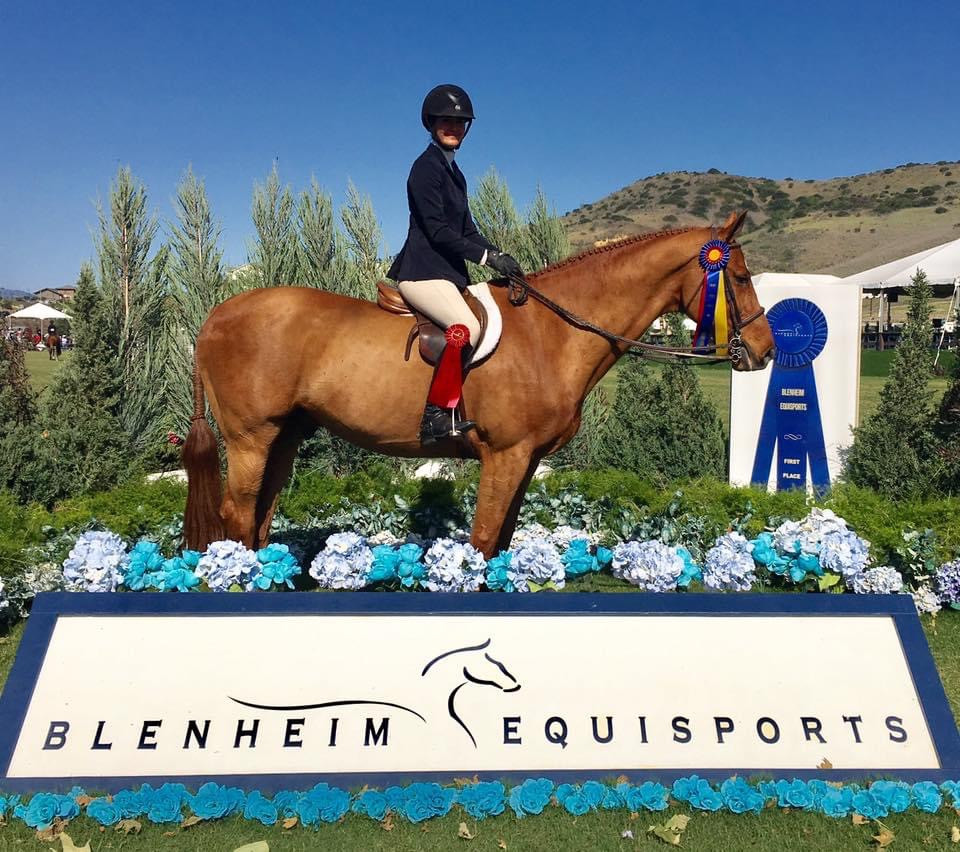 Blue Water Farms Rescue CA Professinal Equestrian Training