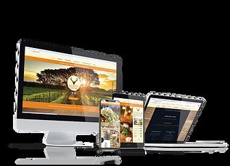 Restaurant website design in sacramento, ca