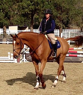 Blue Water Farms Rescue CA Horse Riding Trainer