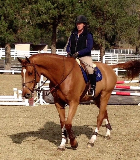 Blue Water Farms Rescue CA Professinal Equestrian Progams for kids