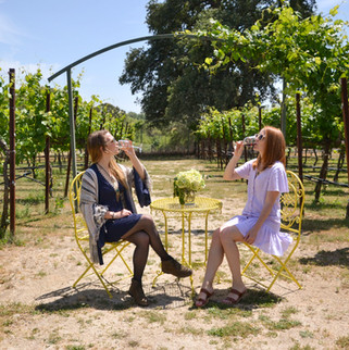 Rancho Roble Wine Tasting in the Vineyard