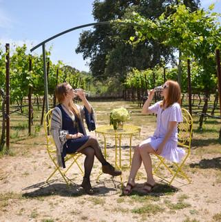 Rancho Roble Wine Tasting in the Vineyard