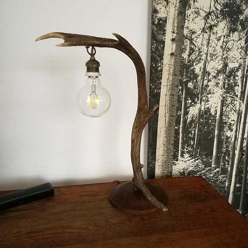 Lampe en bois de cerf