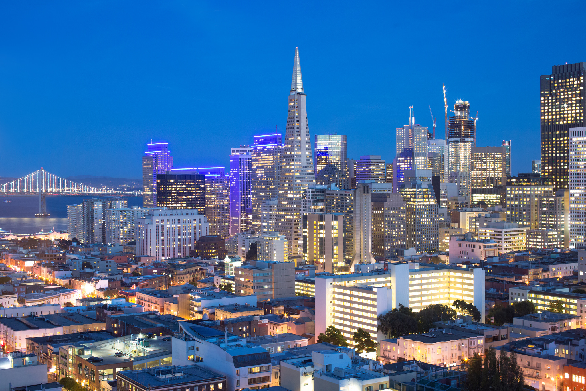 SF Blue Hour