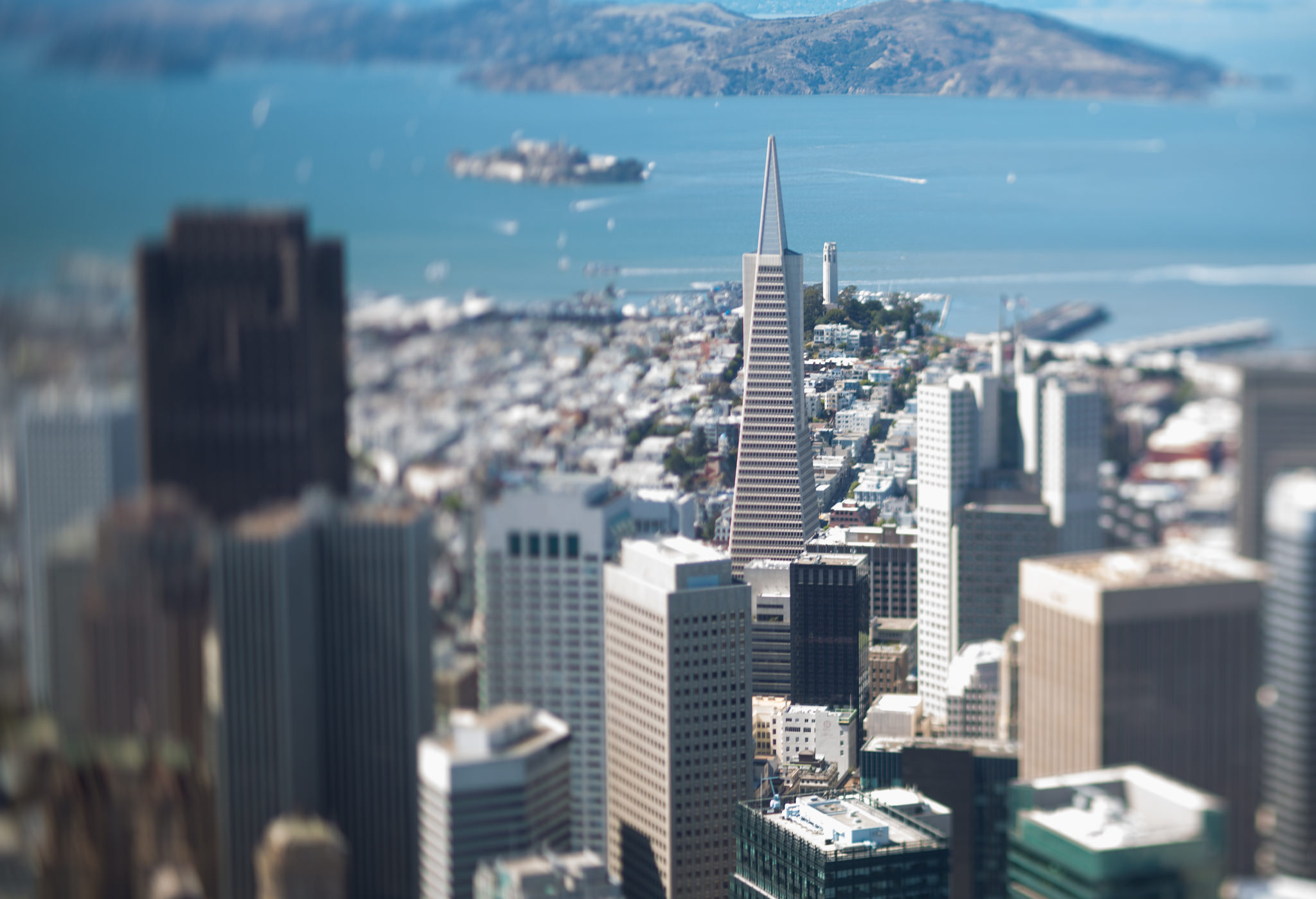 TransAmerica/Coit Tower in focus