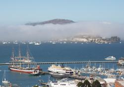 Rolling Fog, SF