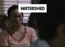 VERDICT-Watershed.jpg