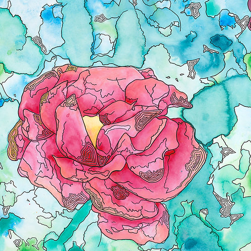 KS Camellia