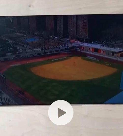 baseball court slice (film)