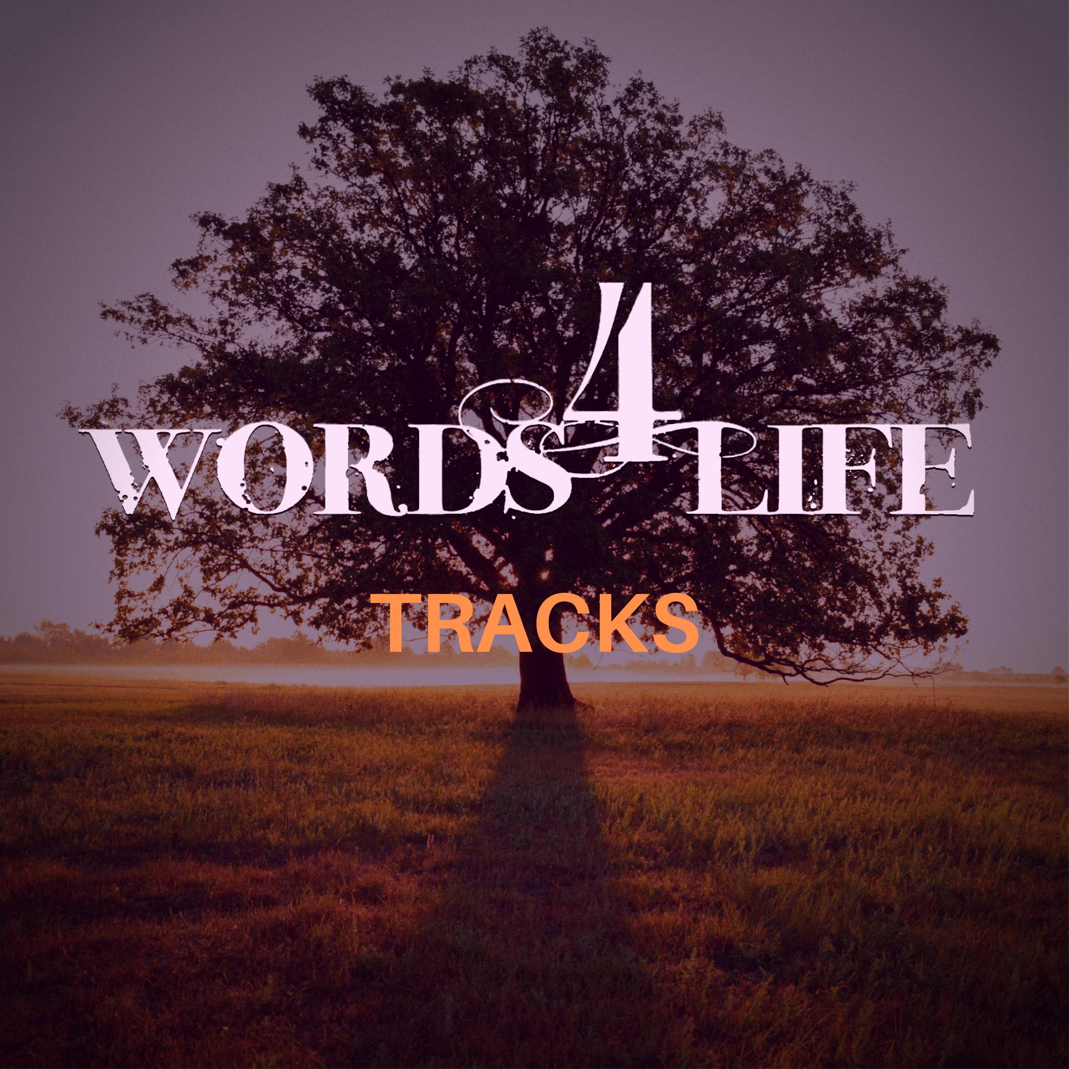 W4L Tracks.png