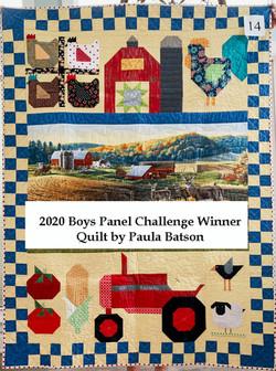 2020 Boys Panel Challenge Winner