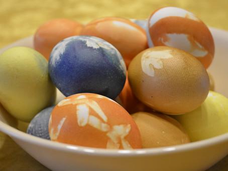 Botanically Dyed Eggs