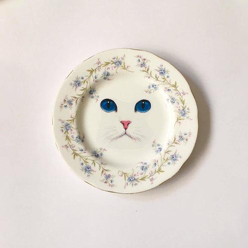 צלחת עיני חתול