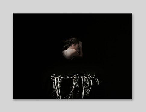"""Flying on a white elephant"", 2018 Série Pleine Lune"