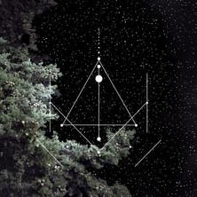 Feel Flow • Semences