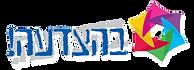 בהצדעה לוגו צניחה חופשית