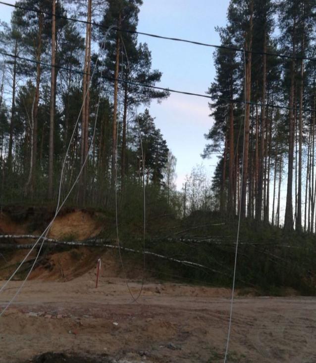 Восстановлено энергоснабжение 5 СНТ во Всеволожском районе