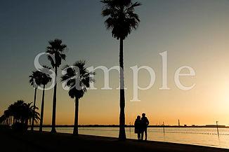Boso_landscape_09.jpg