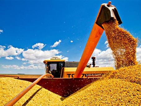 A holding Rural como fator de organização, continuidade e maximização dos lucros no Agronegócio
