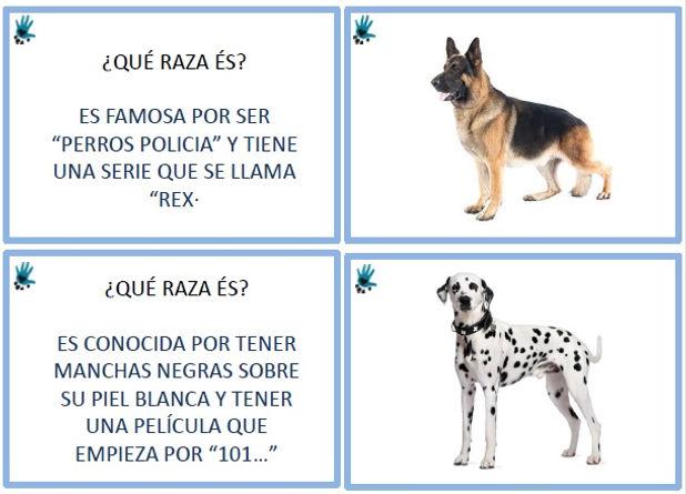 Razas De Perro Preguntas Raçes De Gos Preguntes Perro De Terapia