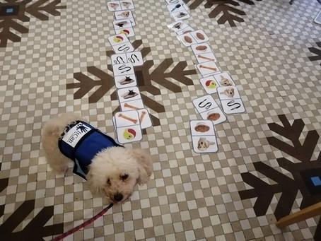 """Domino Especial """"Canino"""". Descargar"""