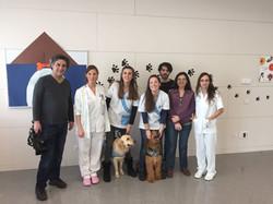 hospital de mataro perros