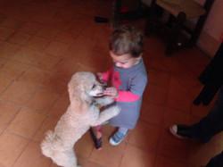 perros y bebes