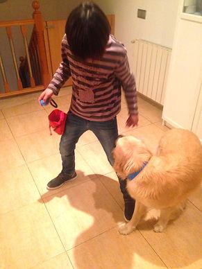Educación canina y adolescentes