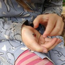 A childat Nature & Nurture holding a ladybird.