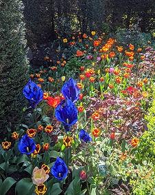 Cobalt Blue Garden Flower Calla Lily Sculptures by Renee Kilburn Ceramics