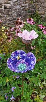 Purple Poppy with Bee.